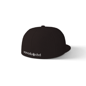 Xanadu Flexfit 6 panel wool blend rear view black hat with white art